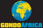 gondoafrica
